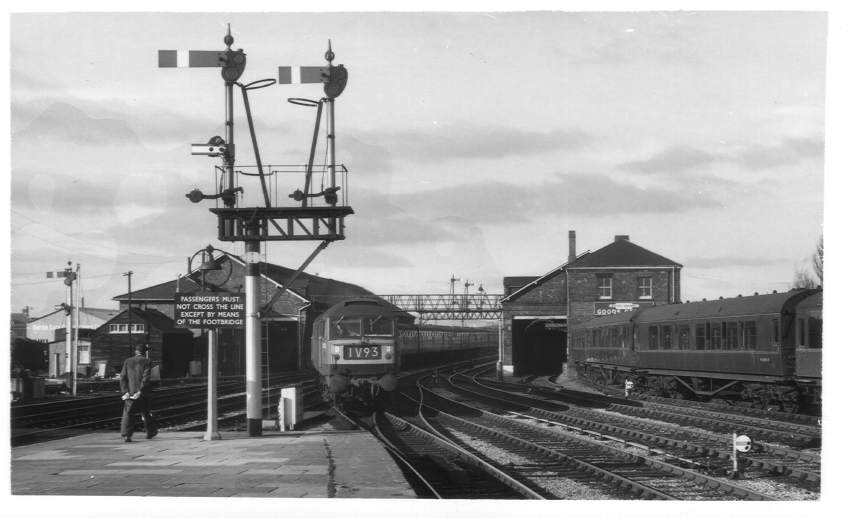 D1593 arriving Hereford Station 1964